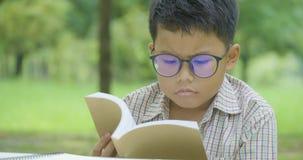 Lectura del niño pequeño libros en el parque en un día soleado almacen de metraje de vídeo