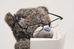 Lectura del oso del peluche Fotos de archivo libres de regalías