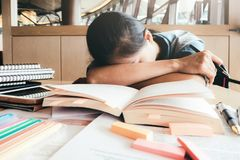 Lectura dura de la muchacha y el dormir en la biblioteca Foto de archivo libre de regalías