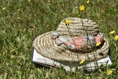 Lecture d'été Photos stock