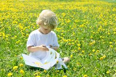 Lecture d'enfant dans le domaine des pissenlits Photographie stock libre de droits