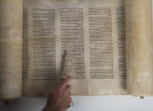 Lecture d'homme d'un rouleau antique de torah image stock