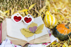 Lecture en parc d'automne Photos stock