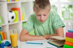 Lecture et étude mignonnes d'écolier Images libres de droits