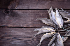 Leczący rybi baran wiąże z arkaną obrazy royalty free