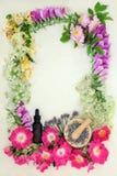 Lecznicza kwiat granica Zdjęcia Royalty Free