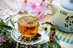 lecznicza ziołowa herbata Zdjęcia Royalty Free