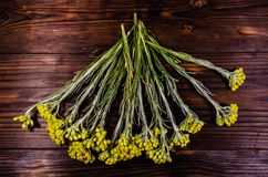 Leczniczej rośliny helichrysum arenarium na drewnianym stole Odgórny widok Obrazy Stock