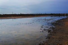 Leczniczy borowinowy jezioro zdjęcie royalty free