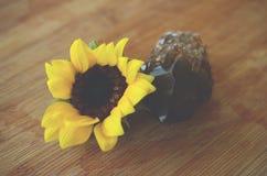 Leczniczy kryształy z słonecznika, ametysta i smokey citrine, Zatarta rocznik fotografia brać z makro- obiektywem w naturalnym oś zdjęcie stock
