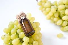 Leczniczy winogron ziaren olej w szklanym słoju, świezi winogrona na białym tle, nasieniodajny ekstrakt przeciwutleniacz i odżywi Zdjęcie Stock
