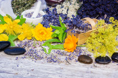 Leczniczy ziele, globula, kwiaty, uzdrawia kamienie zdjęcia stock