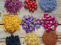 Leczniczy ziele, ziołowej herbaty jagody na stole i asortyment i Obrazy Stock