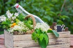 Leczniczy ziele, ziołowy brandy Zdjęcia Stock