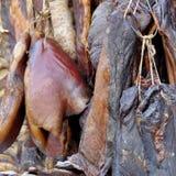 Leczyć kiełbasy i mięso wieszamy dla sprzedaży przy plenerowym pchli targ zdjęcie stock