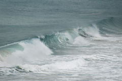 Leczyć fala w oceanie Obrazy Royalty Free