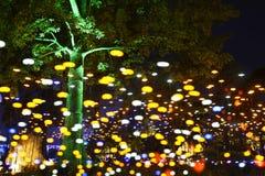LED光在公园 库存图片