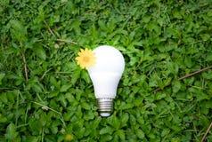 LED-Birne mit Beleuchtung stockfotos