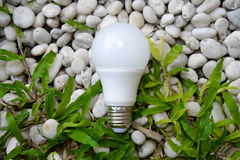 LED bulb - Energy and green nature Stock Photo