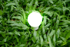 LED Bulb with lighting - Save lighting technology. LED Bulb with lighting on green grass background - Save lighting technology Royalty Free Stock Image
