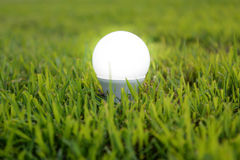 LED Bulb - The lighting Technology Royalty Free Stock Images