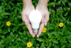 LED Bulb with lighting. Technology of eco-friendly lighting stock images