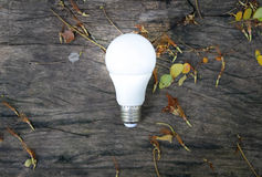 LED Bulb with lighting. Technology of eco-friendly lighting Stock Image