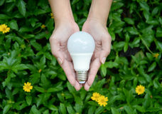 LED Bulb. Technology of eco-friendly lighting Stock Image