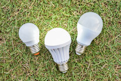 LED Bulbs with lighting on the green grass Stock Image