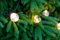 LED bulbs with warm light on a new year spruce tree, christmas decoration concept. Large LED bulbs with warm light on a new year spruce tree, christmas stock photo
