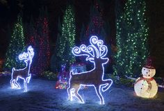 LED Christmas decoration. In garden royalty free stock photos