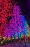 LED Decoration Festival Royalty Free Stock Image