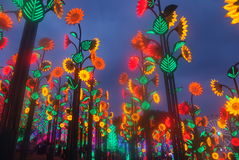 Led Festival Light. Royalty Free Stock Image