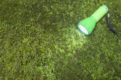 LED flashlight. On the moss covered ground placed diagonally Stock Images