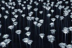 LED flower Royalty Free Stock Image