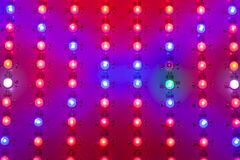Led grow light matrix Royalty Free Stock Photos