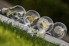 LED, halogen and tungsten bulbs on solar panel, some on the gras Stock Photography