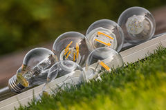 LED, halogen and tungsten bulbs on solar panel, some on the gras Stock Photos