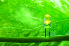 LED lamp with green leaf, ECO energy save World concept lamp lig Royalty Free Stock Images