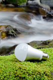 LED light bulb. On the green moss near the brook in vertical position Royalty Free Stock Images