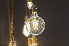 LED light bulb hang from ceiling Stock Photography