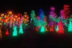 Led Light Festival. Celebration in icity Stock Images