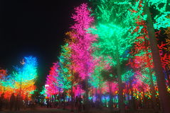 Led Light Festival. In icity, shah alam, Malaysia Royalty Free Stock Photography