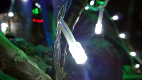 LED light rounds tree Stock Photography