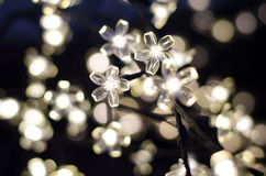 Led lights in the form of white flowers Stock Images