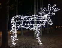 LED lights in the shape of an elk Stock Image