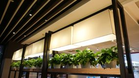 Led plant growth lamp seedling in commercial building royalty free stock photography