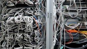 LED port status is blink. Network gigabit switch for high speed network in data center room. RJ45 jacks blinking LED lights. Close. Up stock video footage