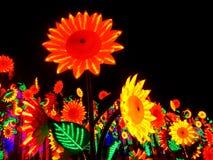 LED sun flowers Stock Image