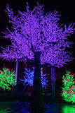 LED tree decoration Royalty Free Stock Image